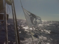 Lee Overlay, fetching to Guadalupe in 18 kts