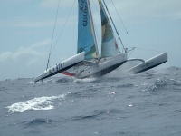 "ORMA 60 ""Region Guadeloupe"""
