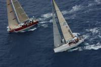 Quokka returns for the 2014 RC600, chartered by Bernie Evan Wong